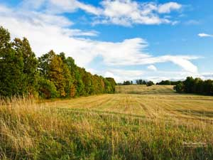 Земельне законодавство